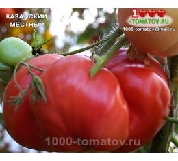 Томат КАЗАНСКИЙ МЕСТНЫЙ