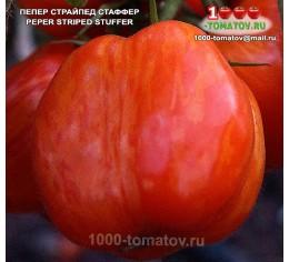 Томат ПЕПЕР СТРАЙПЕД СТАФФЕР